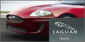 Jaguar Naples